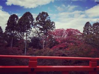 1京都の空.jpeg